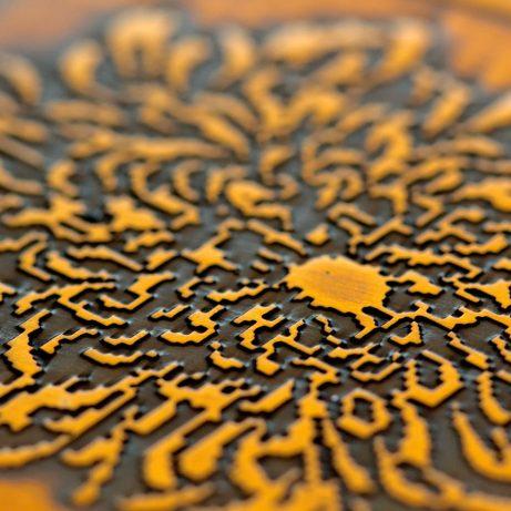 Chrysanthemum (2017)